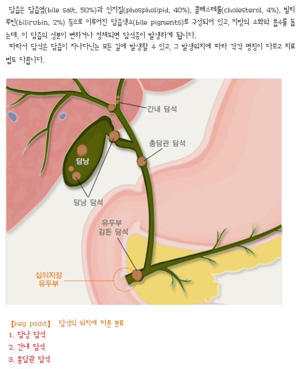 주석 2019-07-26 114308